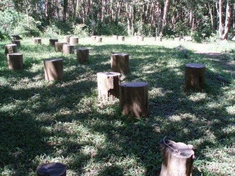 龜山三角點附近的森林教室。