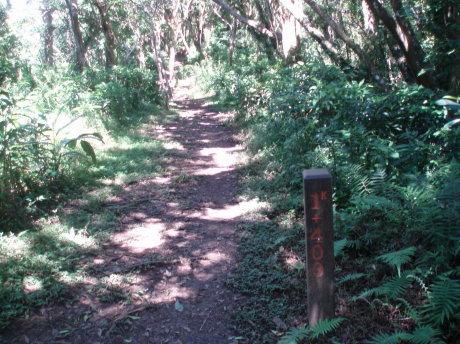 步道旁的里程標示。