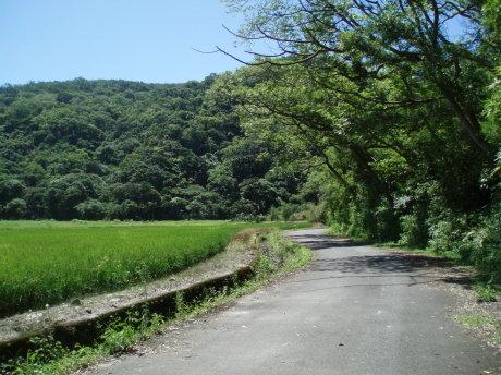 從小車道沿著龜山山麓繞回朝陽漁港(約20分鐘)。