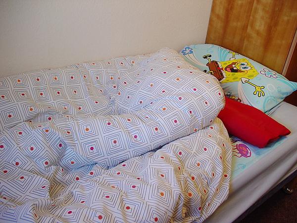 雙人被11.5 tog 4.5磅 記憶枕頭 3.5磅