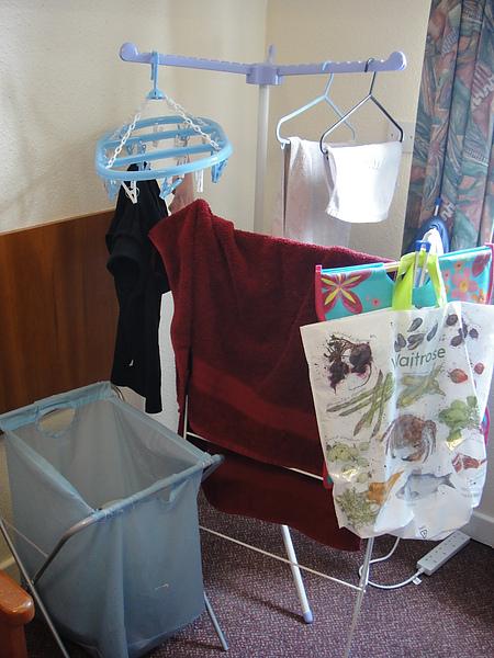 衣架*2 洗衣籃 掛衣夾 衣架十個左右 6.5磅 (售出)