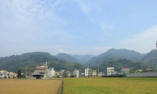 騎芋季,棗幸福 231 (950x573).jpg