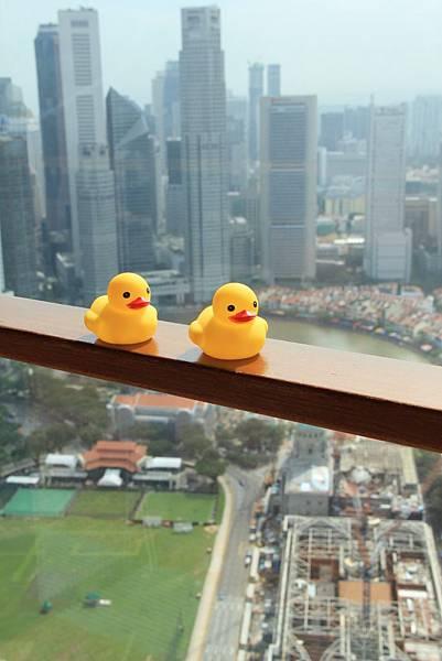 20131227~30新加坡四日自由行 060 (683x1024).jpg