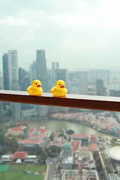 20131227~30新加坡四日自由行 059 (683x1024).jpg