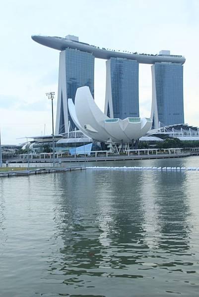 20131227~30新加坡四日自由行 174 (683x1024).jpg