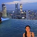 20131227~30新加坡四日自由行 386 (683x1024).jpg