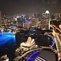 20131227~30新加坡四日自由行 446 (1024x683).jpg