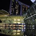 20131227~30新加坡四日自由行 638 (683x1024).jpg