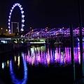 20131227~30新加坡四日自由行 670 (1024x683).jpg