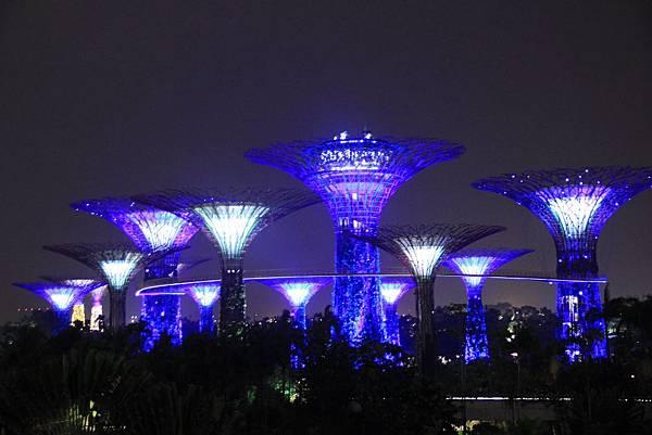 20131227~30新加坡四日自由行 546 (1024x683).jpg