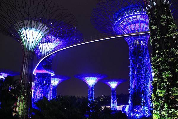 20131227~30新加坡四日自由行 564 (1024x683).jpg