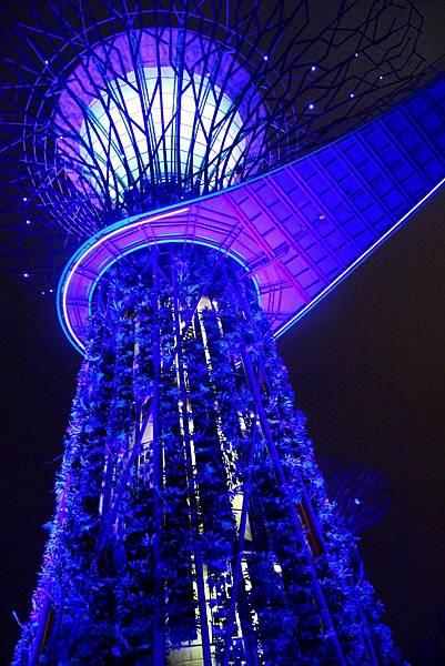 20131227~30新加坡四日自由行 577 (683x1024).jpg
