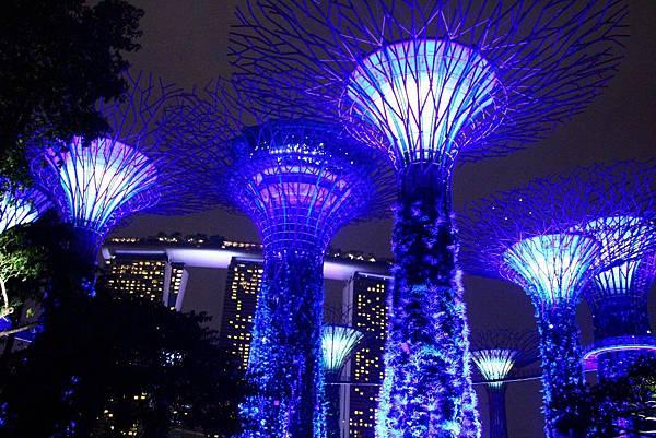 20131227~30新加坡四日自由行 593 (1024x683).jpg