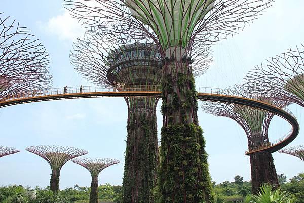 20131227~30新加坡四日自由行 430 (1024x683).jpg
