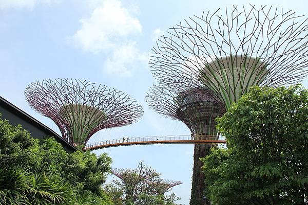 20131227~30新加坡四日自由行 429 (1024x683).jpg