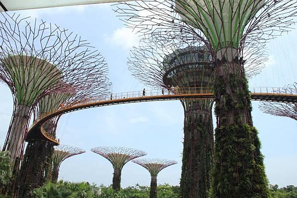 20131227~30新加坡四日自由行 431 (1024x683).jpg
