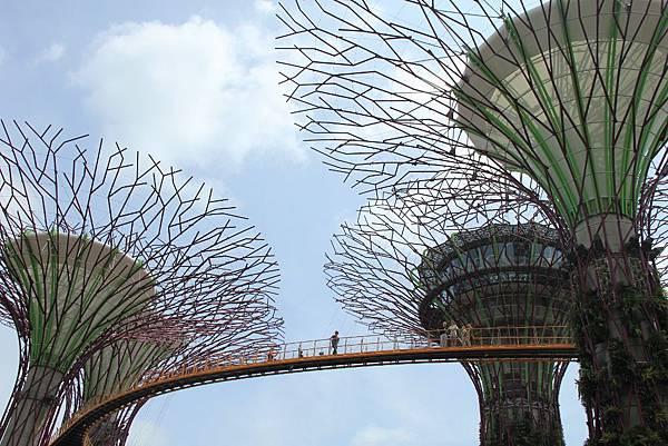 20131227~30新加坡四日自由行 434 (1024x683).jpg
