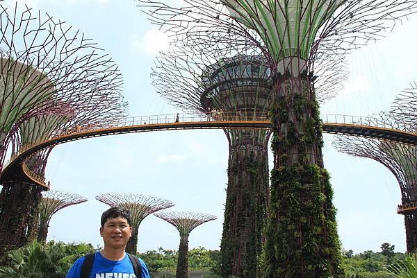 20131227~30新加坡四日自由行 432 (1024x683).jpg