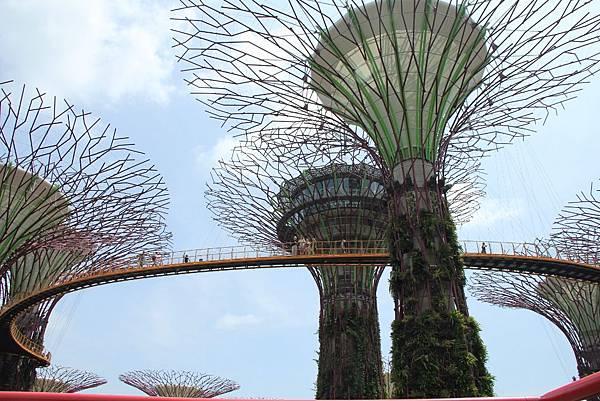 20131227~30新加坡四日自由行 433 (1024x683).jpg
