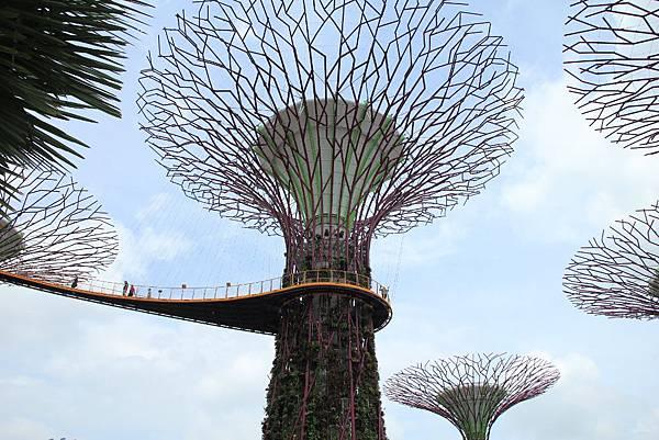 20131227~30新加坡四日自由行 455 (1024x683).jpg