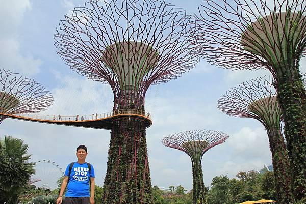 20131227~30新加坡四日自由行 450 (1024x683).jpg