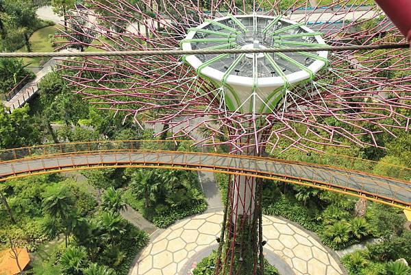 20131227~30新加坡四日自由行 497 (1024x683).jpg