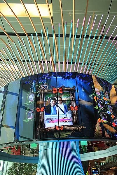 20131227~30新加坡四日自由行 128 (683x1024).jpg