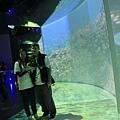 基隆海洋博物館 071 (683x1024).jpg