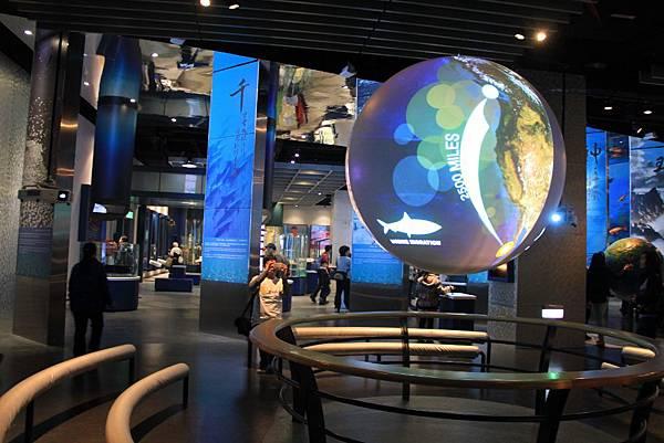 基隆海洋博物館 109 (1024x683).jpg