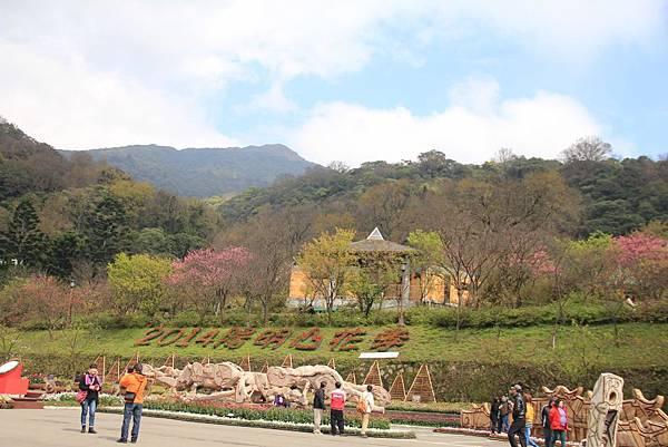 2014陽明山花季 097 (1024x683).jpg