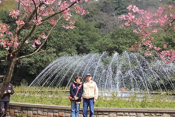 2014陽明山花季 106 (1024x683).jpg