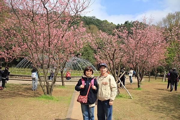 2014陽明山花季 173 (1024x683).jpg