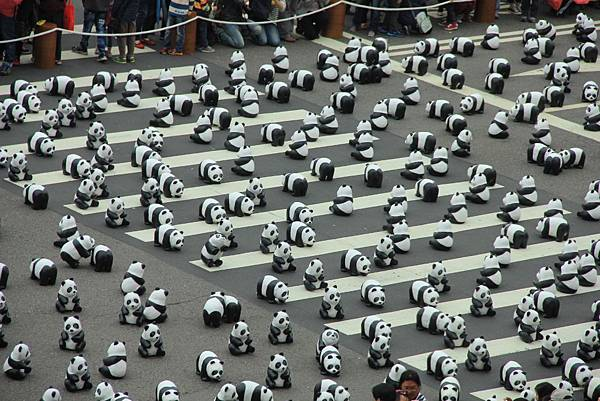 1600隻台北紙熊猫 170 (1024x683).jpg