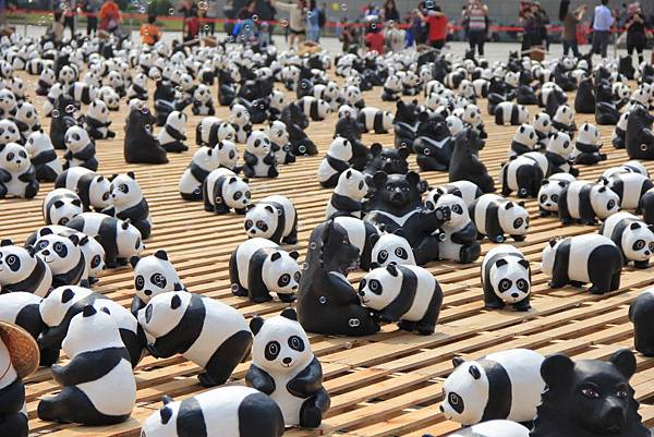 1600隻紙熊貓中正紀念堂與大家見面 059 (1024x683).jpg