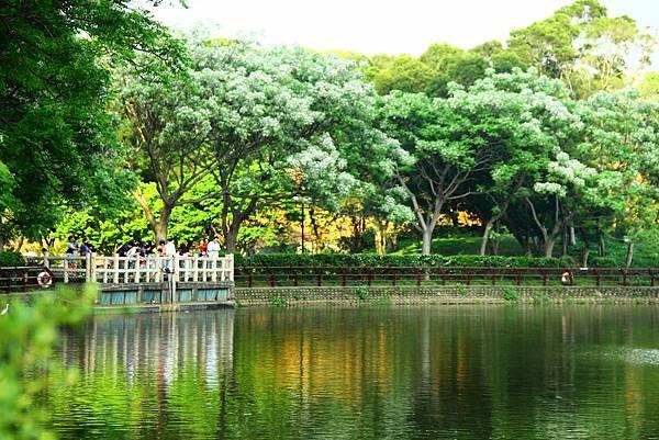 新竹靜心湖 020 (1024x683).jpg