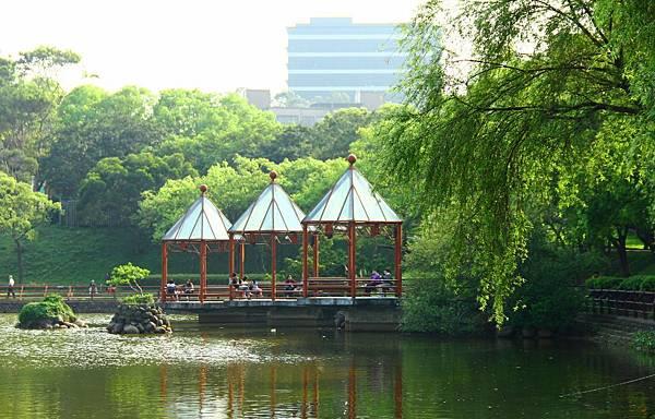 新竹靜心湖 023 (1024x655).jpg