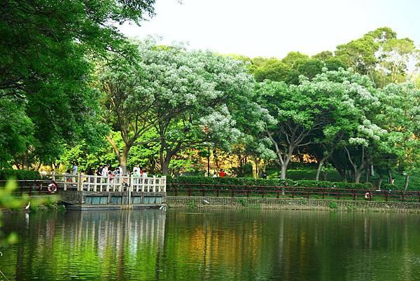新竹靜心湖 028 (1024x683).jpg