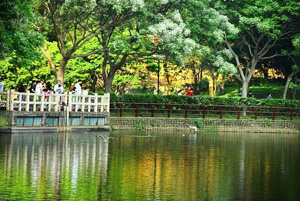 新竹靜心湖 029 (1024x683).jpg