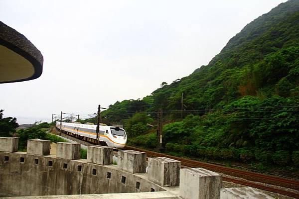2014三義苗栗油桐花 227 (800x533).jpg