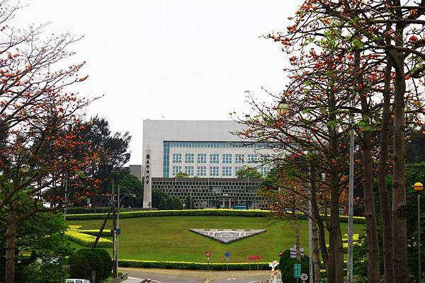 2014桃園油桐花開蘿莎會館 008 (800x533).jpg