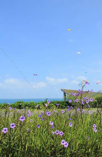 2014白沙灣國際風箏節 071 (663x1024).jpg