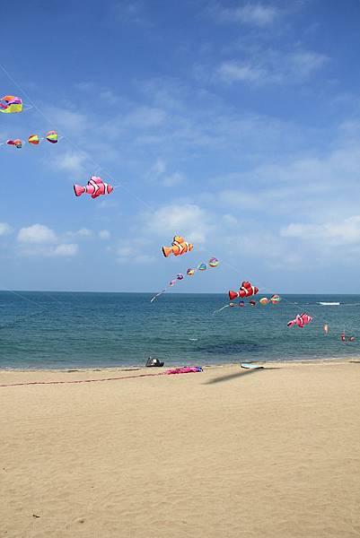 2014白沙灣國際風箏節 100 (683x1024).jpg