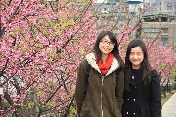 內湖樂湖公園櫻花 002 (1024x683).jpg
