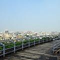 台灣好行-彰化鹿港線 319 (1024x683).jpg