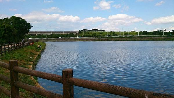 桃園陴塘公園_3512.jpg