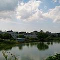 桃園陴塘公園_9589.jpg