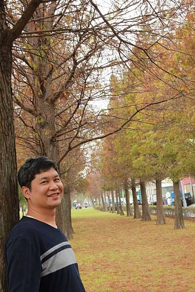 玉山公園落羽松 029 (683x1024).jpg