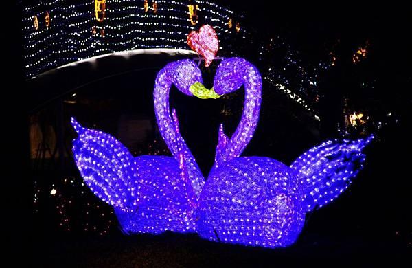 桃園中路風禾公園燈會 020 (1024x664).jpg