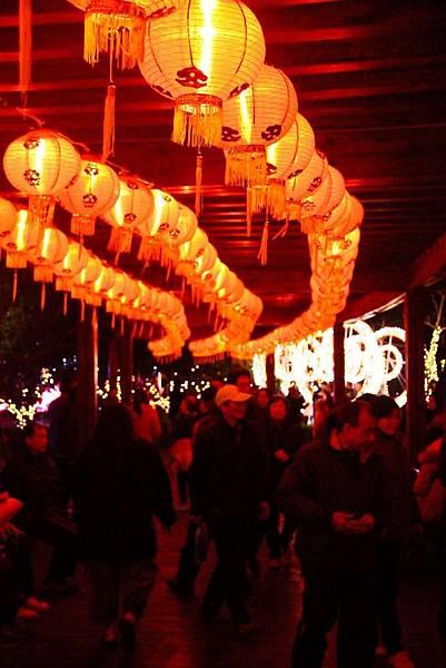 桃園中路風禾公園燈會 032 (683x1024).jpg
