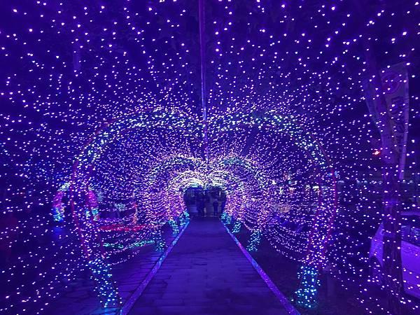宜蘭縣政府耶誕燈_181125_0063.jpg